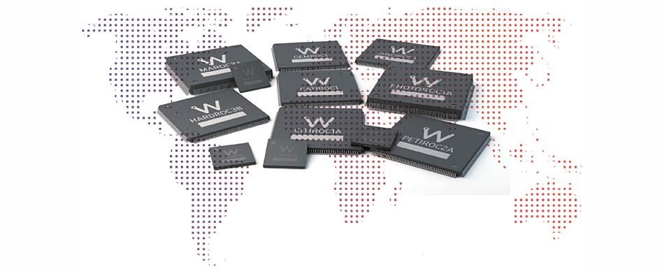 weeroc img - CAEN WEEROC 定制化集成电路芯片