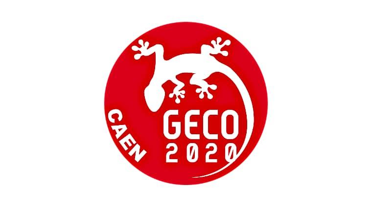 GECO2020